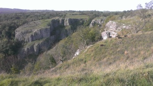 cheddar view